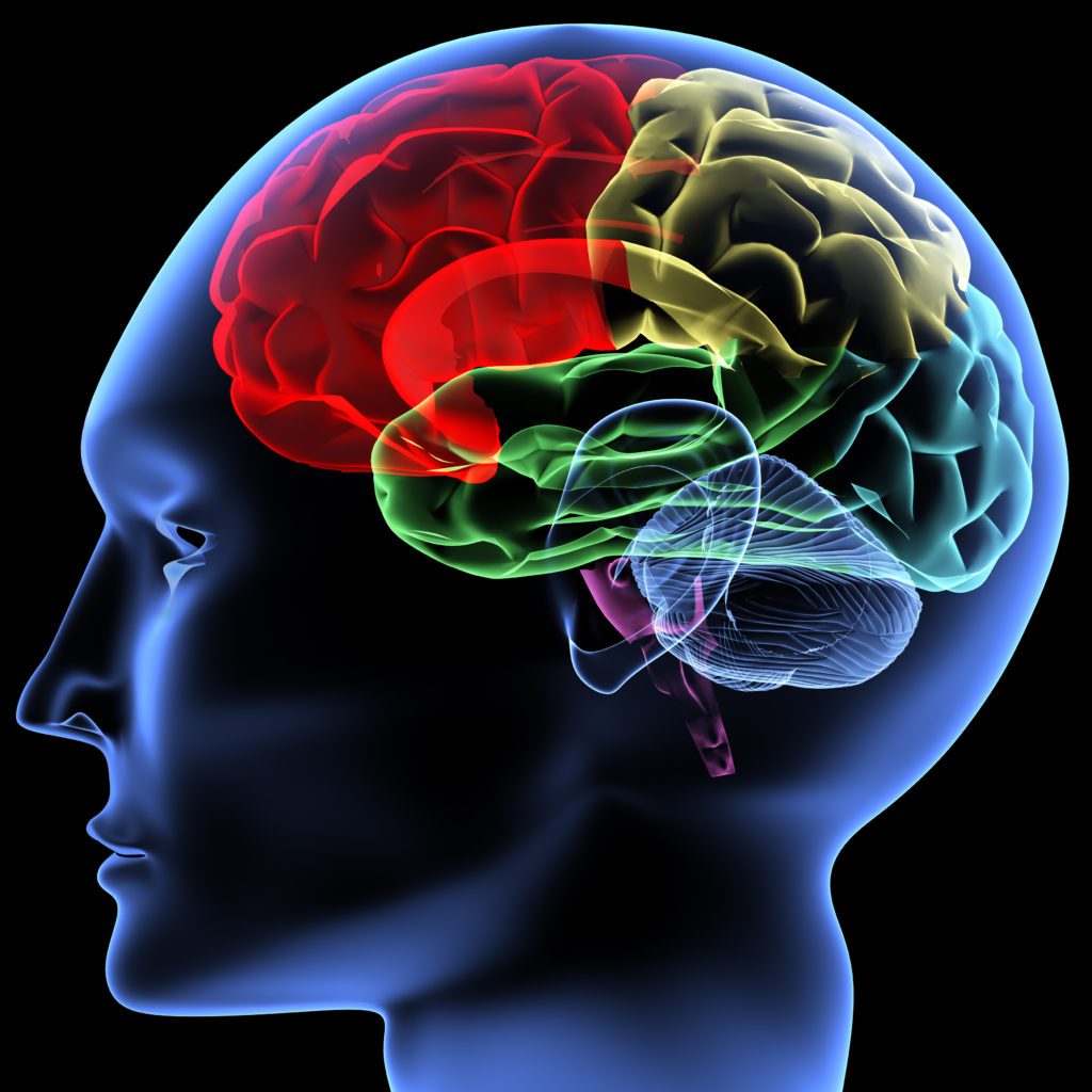 Cognitive control functioning in opioid use disorder